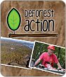 DeforestACTION -Borneo Contest Top Candidates